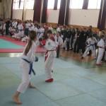 Galantský karate cup - 12. ročník