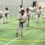 Seiwakai Seminar London 02